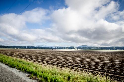 Skagit Delta Potato Farm-001