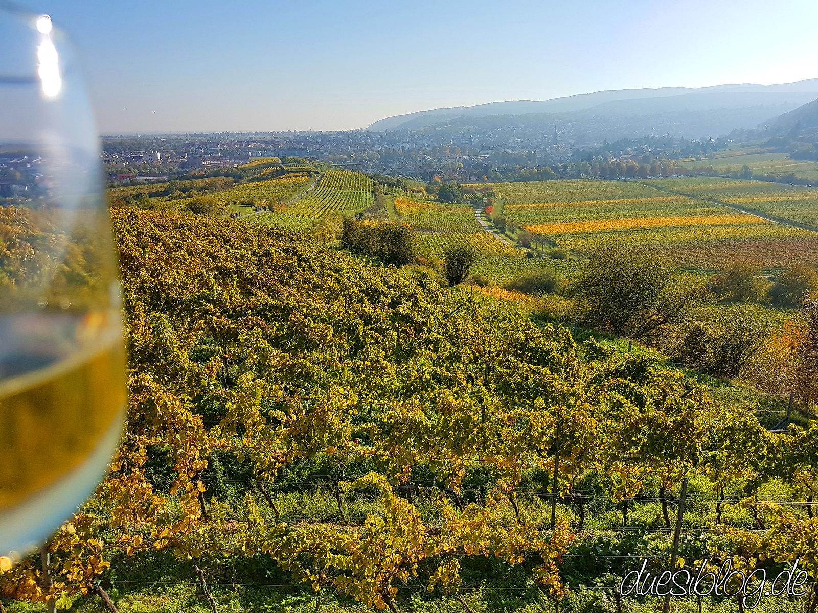 Generation Pfalz Weingut Margaretenhof duesiblog 10