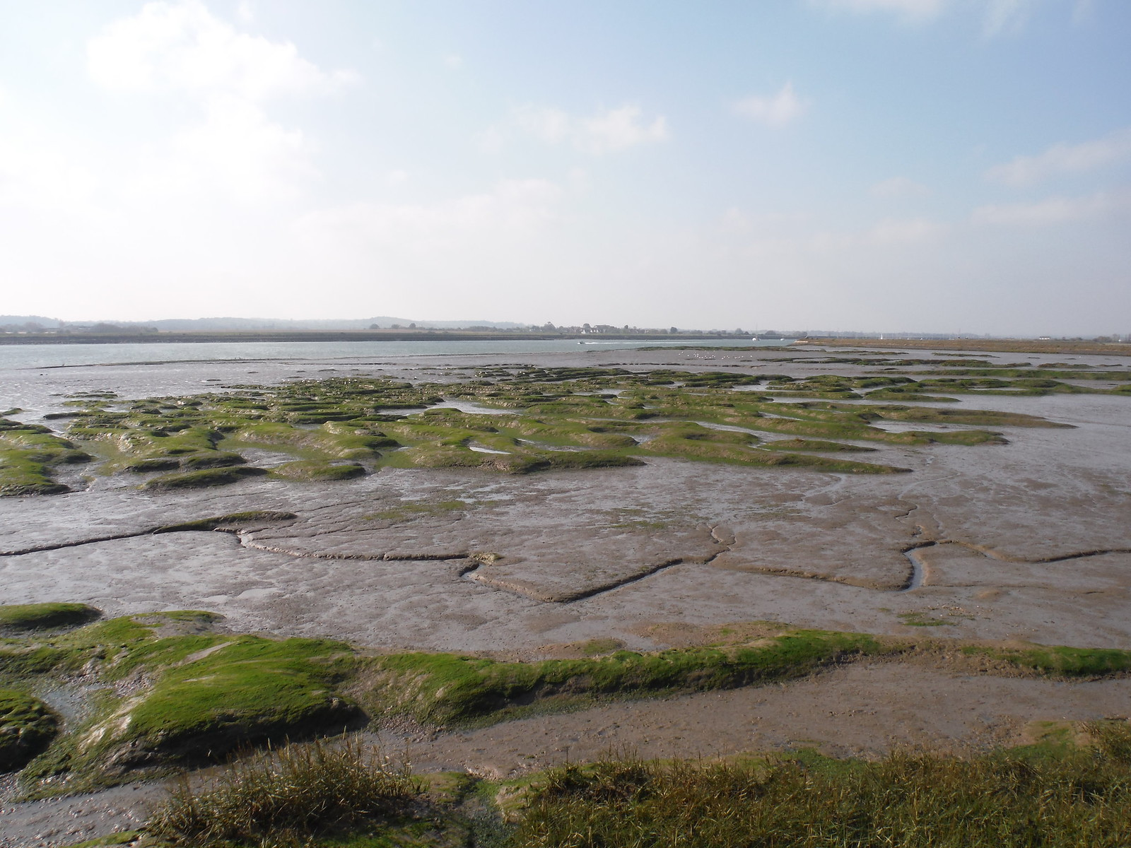 Mudflats SWC Walk 162 North Fambridge to Burnham-on-Crouch