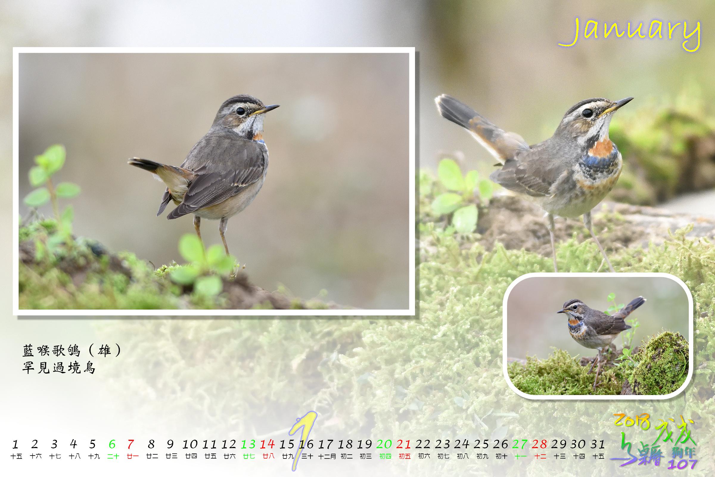 Calendar2018_Alder2_01