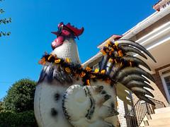 The Famed Rooster of Cleveland Park