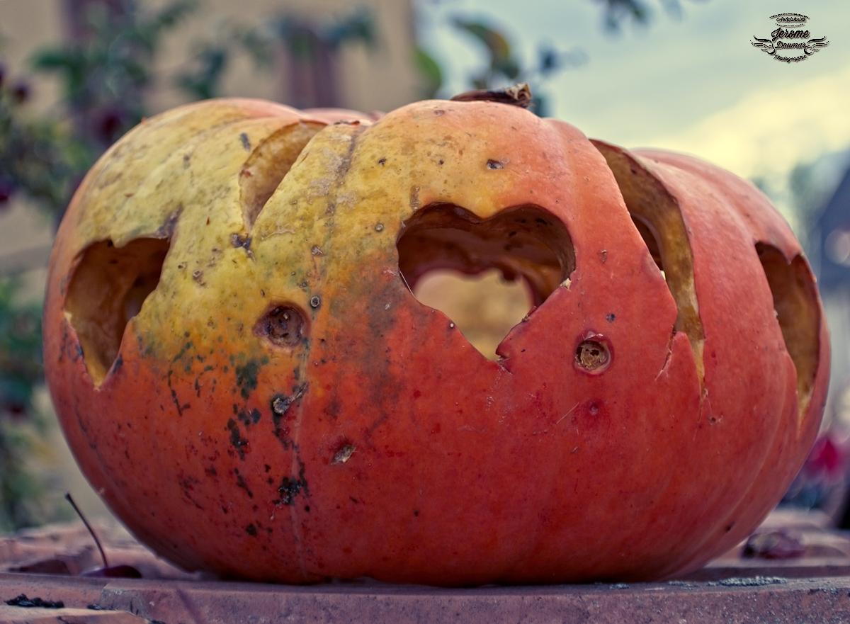 Pumpkin party 8