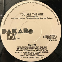 AM-FM:YOU ARE THE ONE(LABEL SIDE-B)