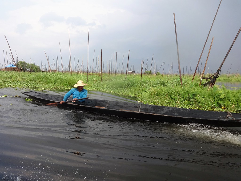 Floating gardens on Inle Lake, Myanmar