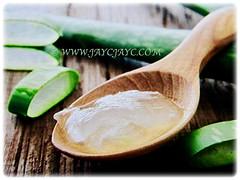 Gel of Aloe vera (Chinese/Indian Aloe, True Aloe, Barbados Aloe, Burn/Medicinal Aloe, First Aid Plant) that are often used to heal minor cuts, burns and sunburns, 2 Nov 2017