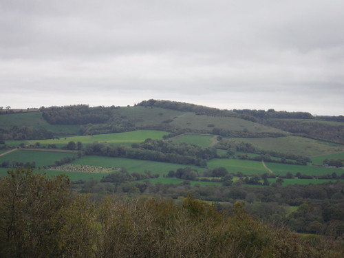 Beacon Hill beyond Exton - View from Old Winchester Hill