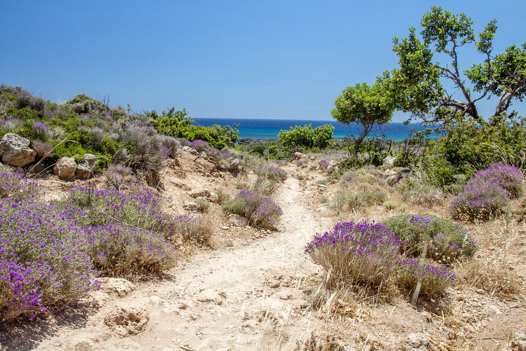 Path to Kedrodasos Beach - Crete, Greece