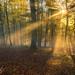 Herbststimmung by PhotoworksKorbach
