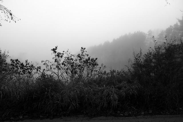 It Was Foggy