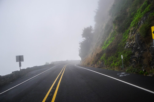 Oregon Coast Road in Fog-001