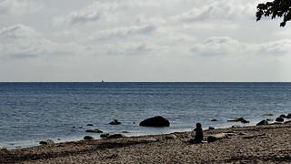 Wie ein Delphin am Strand von Rügen fühlt zu schwer die Glut der Sonne 01828