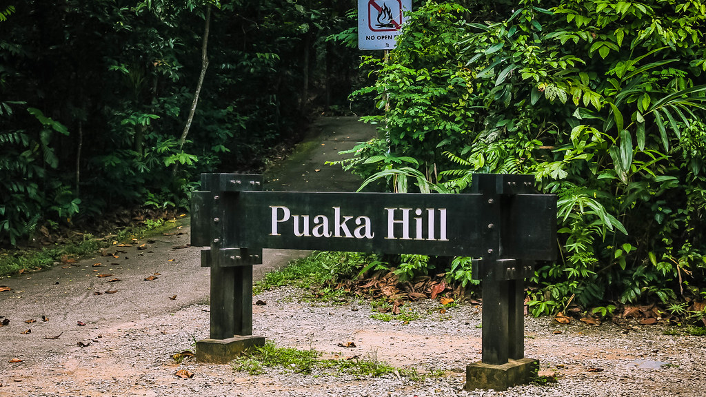 Image result for puaka hill