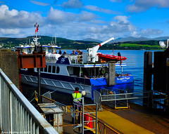 Scotland foot passenger ferry Argyll Flyer docking at Gourock 31 August 2017 by Anne MacKay