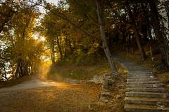 Sun-fall