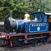 Bluebell at Bewdley