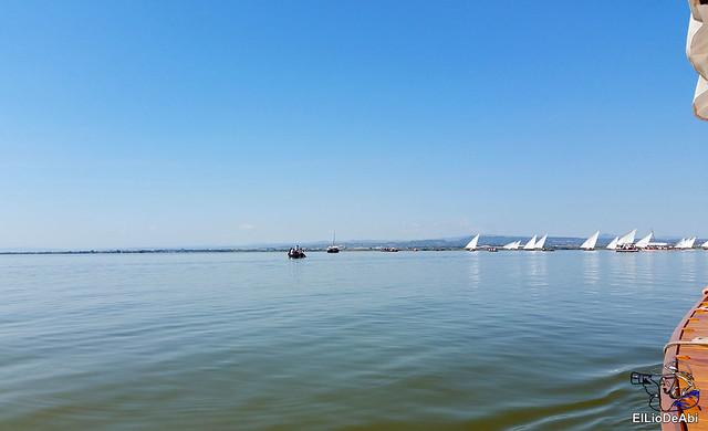 Paseo en barca por la Albufera de Valencia (7)