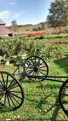 an amish farm, wheels, and garden
