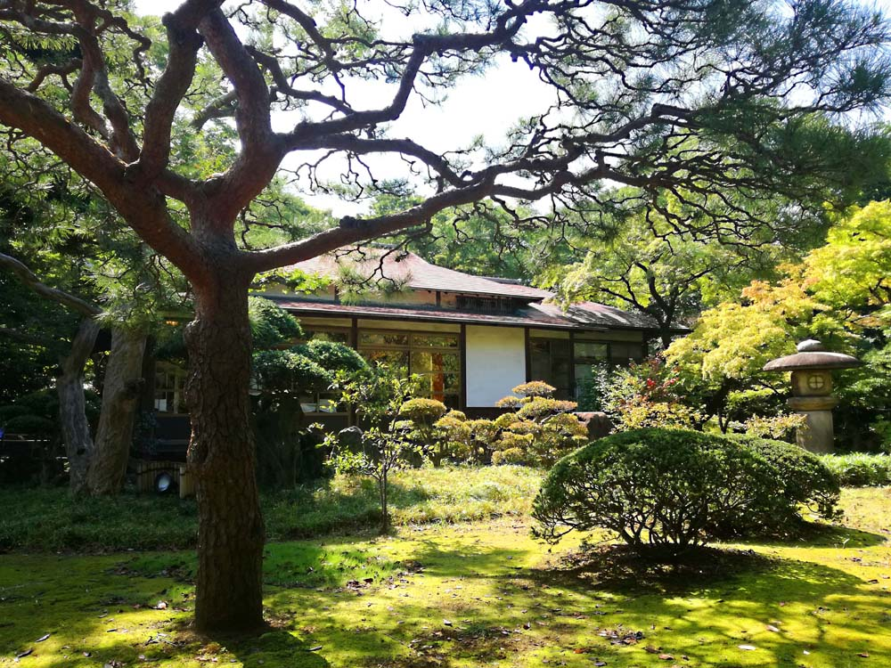 toomilog-koishikawakourakuen_007