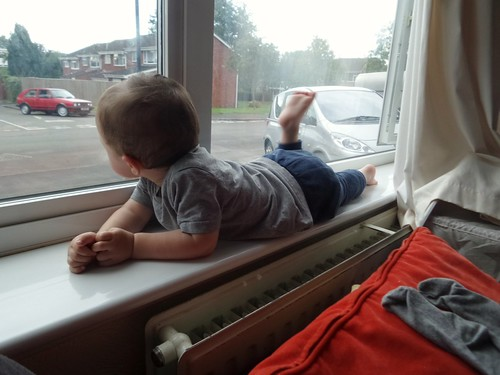 Watching the world go by