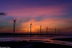 高美濕地 - 夕陽的餘暉