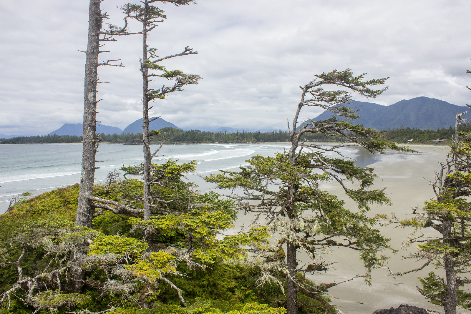 View from Cox Bay lookout, Tofino, BC