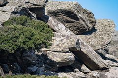 Ikaria - Group of boulders with tree