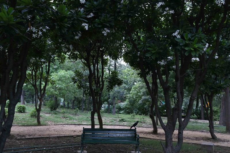 City Hangout - The World's Best Garden Bench, Nehru Park