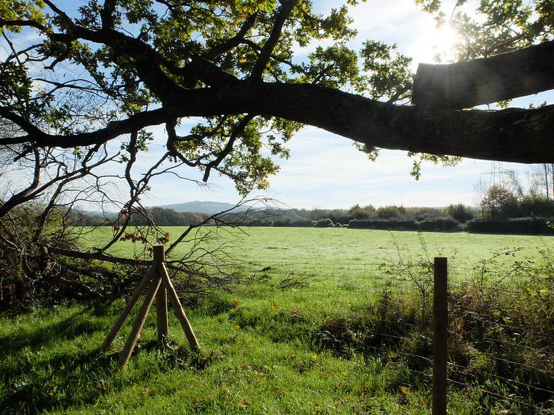 West Sussex @porcelinasworld