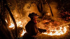 Top Stories News : Death toll rises to 31 as fire crews make progress in California firestorm