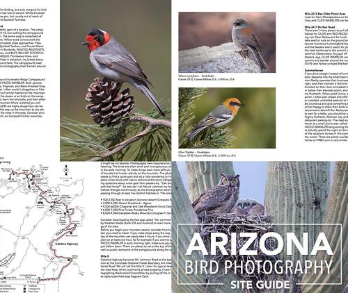 Arizona Site Guide Released