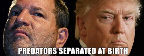 Predators Separated At Birth: Harvey Weinstein and Donald Trump