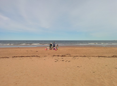 Looking north, North Rustico Beach #pei #princeedwardisland #northrustico #rustico #beach #gulfofstlawrence #latergram