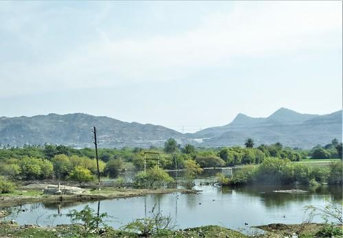 i-jodhpur-mount abu-route  (19)