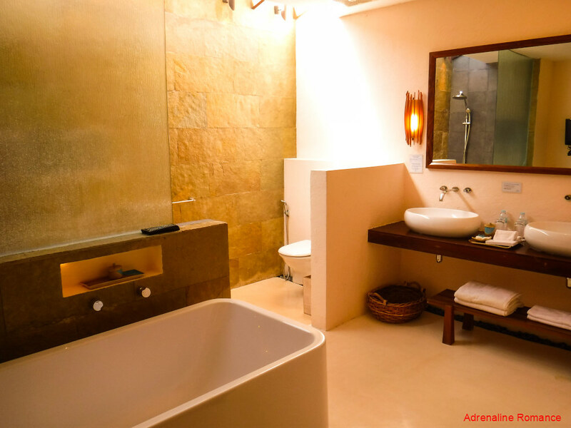Luxurious Toilet and Bath