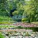Bennetts Water Gardens - 08