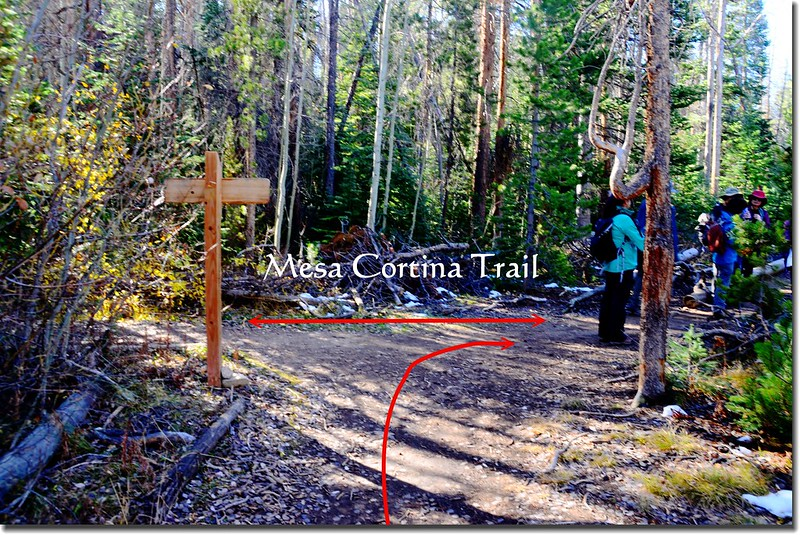 Willowbrook Trail & Mesa Cortina Trail fork