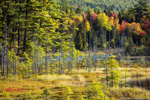 Autumn in Baxter State Park