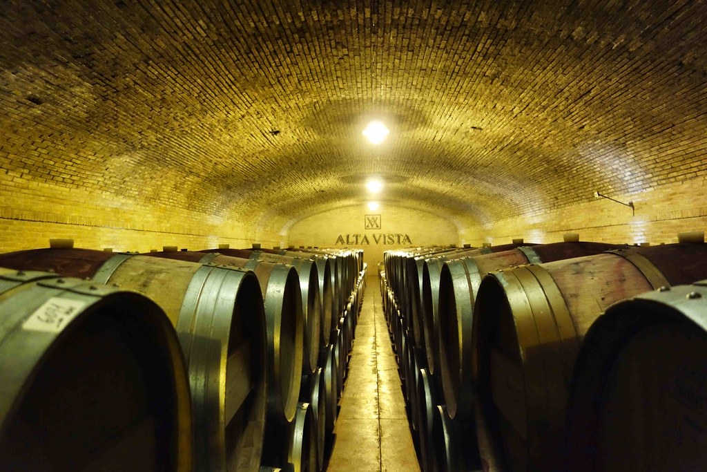 Mendoza - Bodega Alta Vista Cave