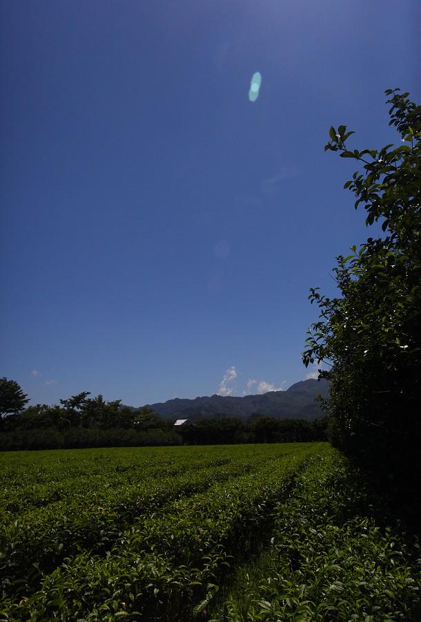 台東景點龍田自行車道A04