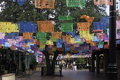 Old market San Antonio