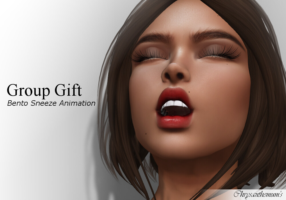 Group Gift – Bento Sneeze Animation