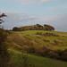 SDW: Chanctonbury Hill & Ring