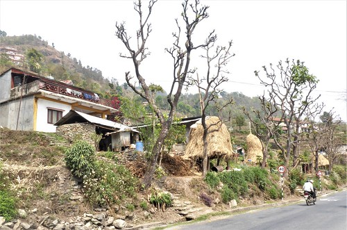 n-pokhara-Pagode-Paix-descente (7)