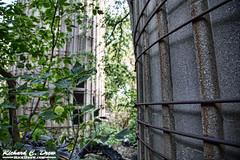 Abandoned farm near Batavia, IL - cool old silos