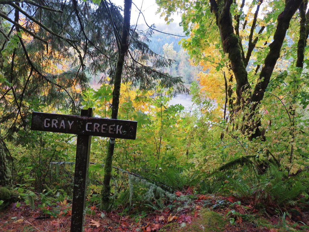 Gray Creek from the Mill Hill Trail