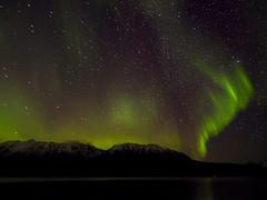 Aurora borealis-220110