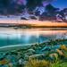 tweed river breaking dawn