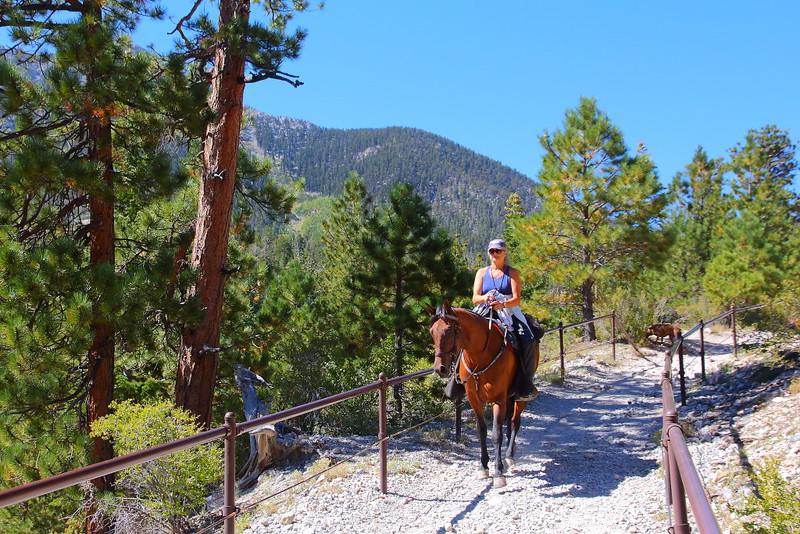 IMG_9688 Bristlecone Pine Trail