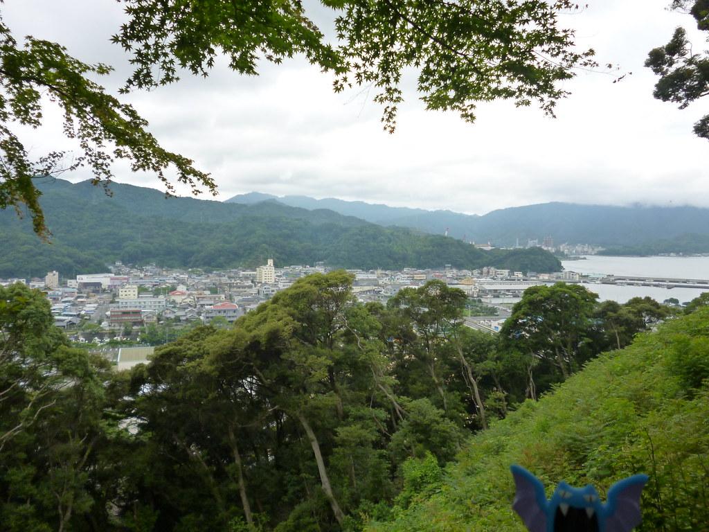 Golbat in Saiki, Oita 11 (Nokayama park)