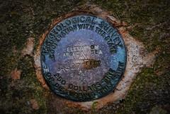 USGS Benchmark, Thunderhead Mountain, TN/NC